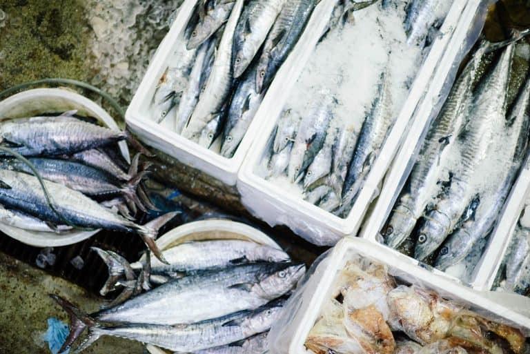 fresh fishmonger uk